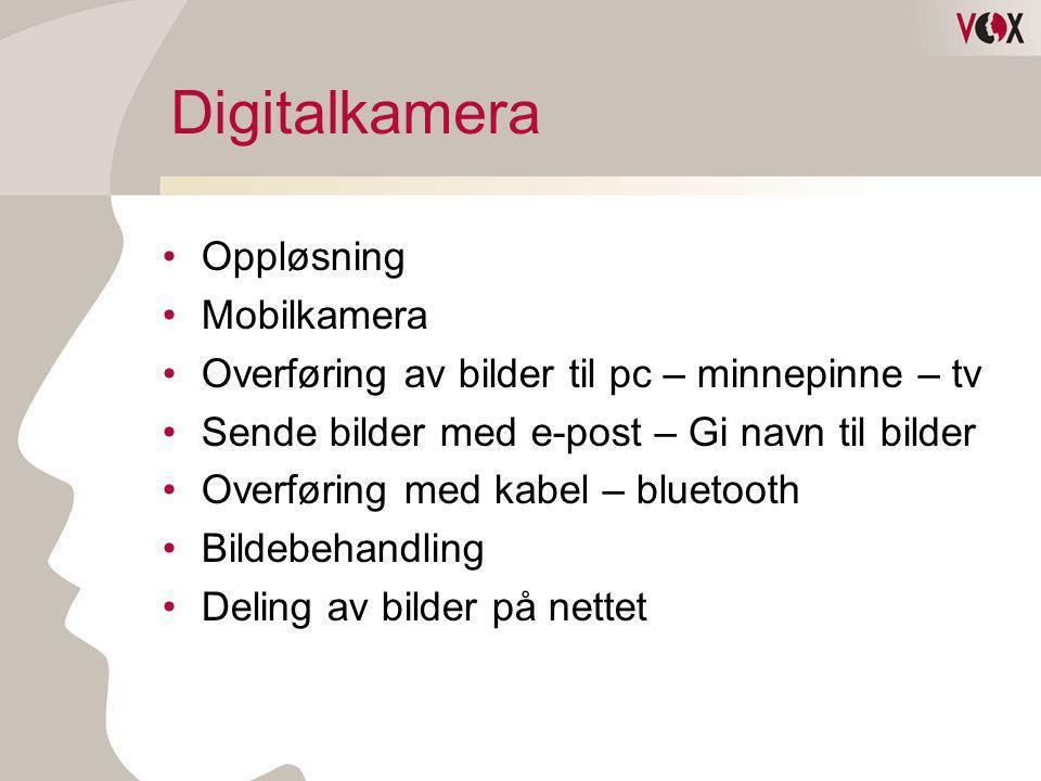 Digitalkamera Oppløsning Mobilkamera