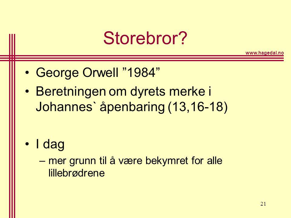 Storebror George Orwell 1984