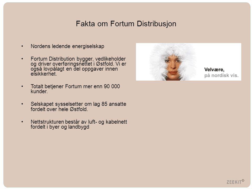 Fakta om Fortum Distribusjon