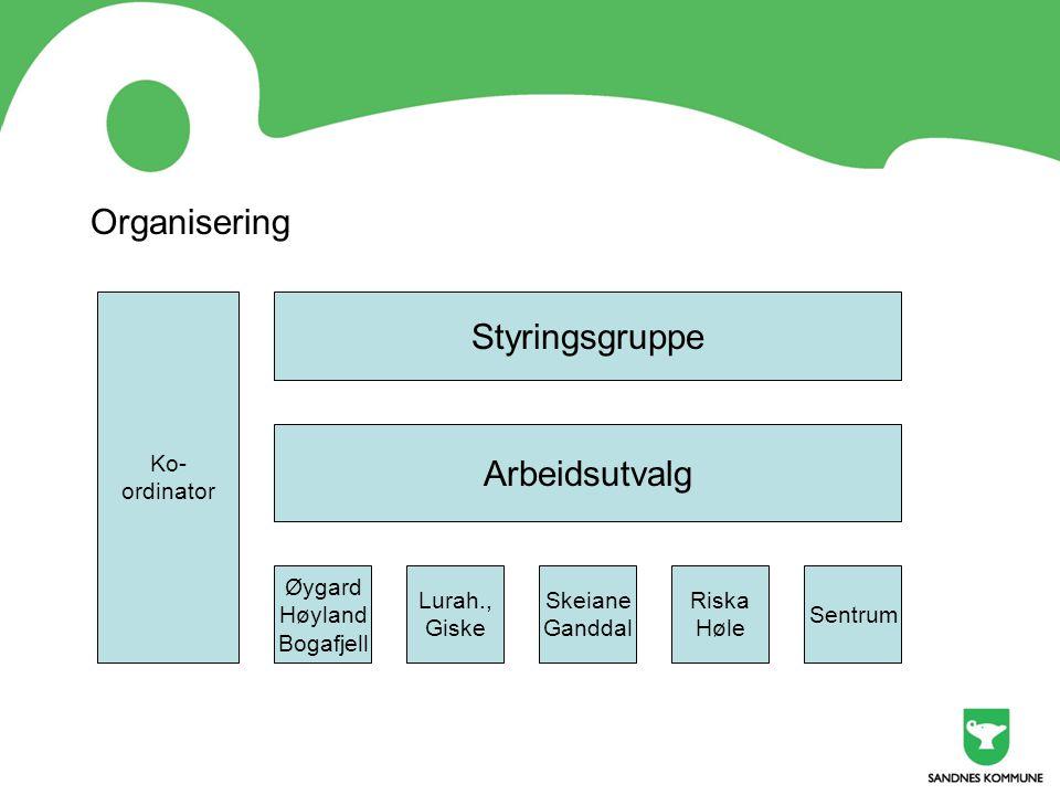 Organisering Styringsgruppe Arbeidsutvalg Ko- ordinator Øygard Høyland