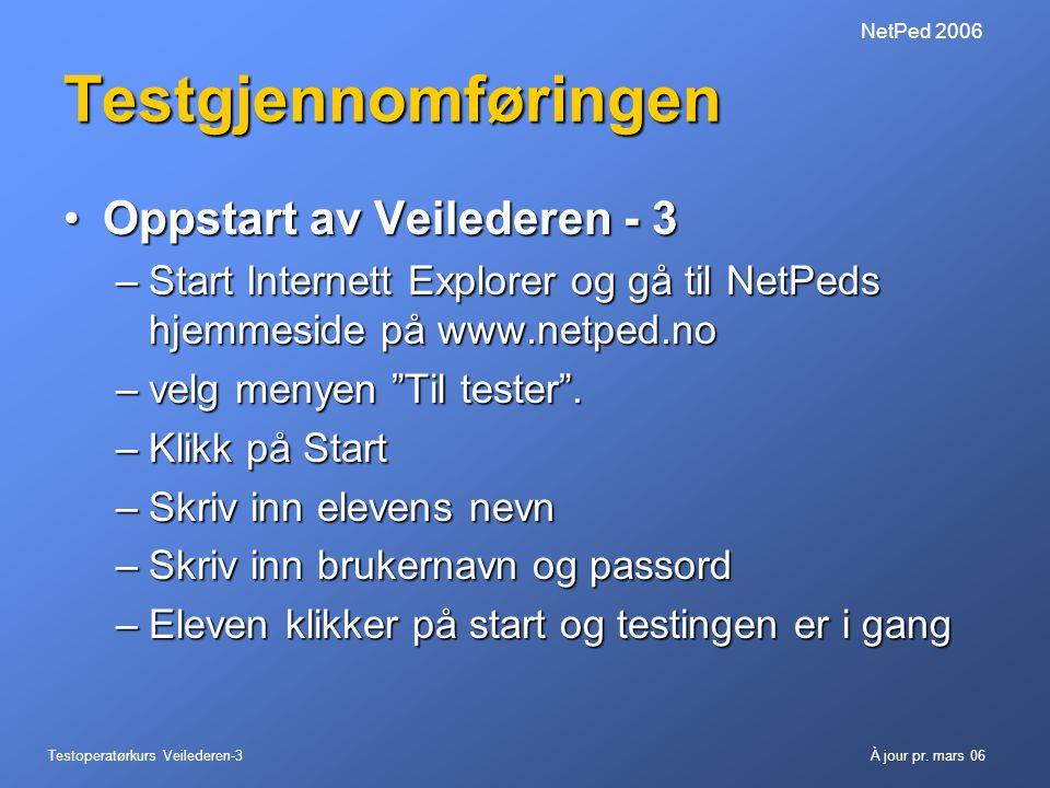 Testgjennomføringen Oppstart av Veilederen - 3