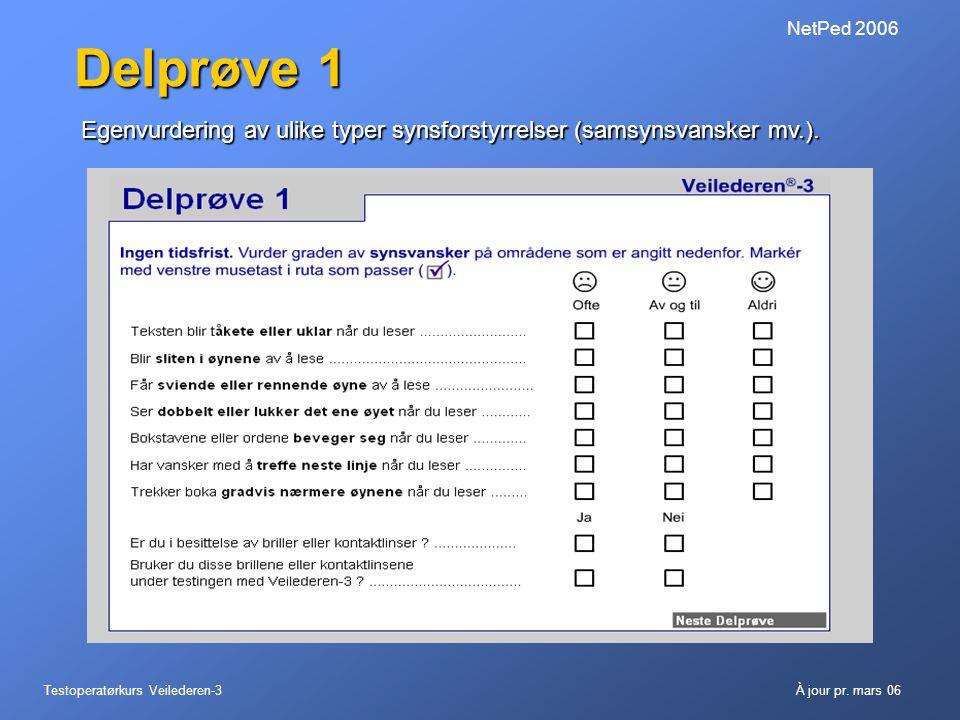 NetPed 2006 Delprøve 1. Egenvurdering av ulike typer synsforstyrrelser (samsynsvansker mv.).