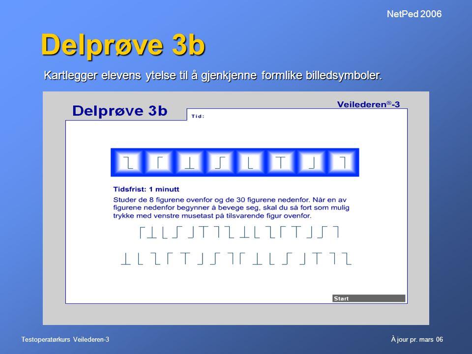 NetPed 2006 Delprøve 3b. Kartlegger elevens ytelse til å gjenkjenne formlike billedsymboler.