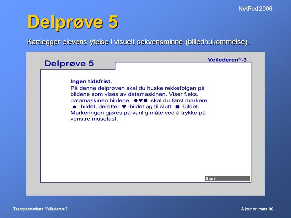 NetPed 2006 Delprøve 5. Kartlegger elevens ytelse i visuelt sekvensminne (billedhukommelse).