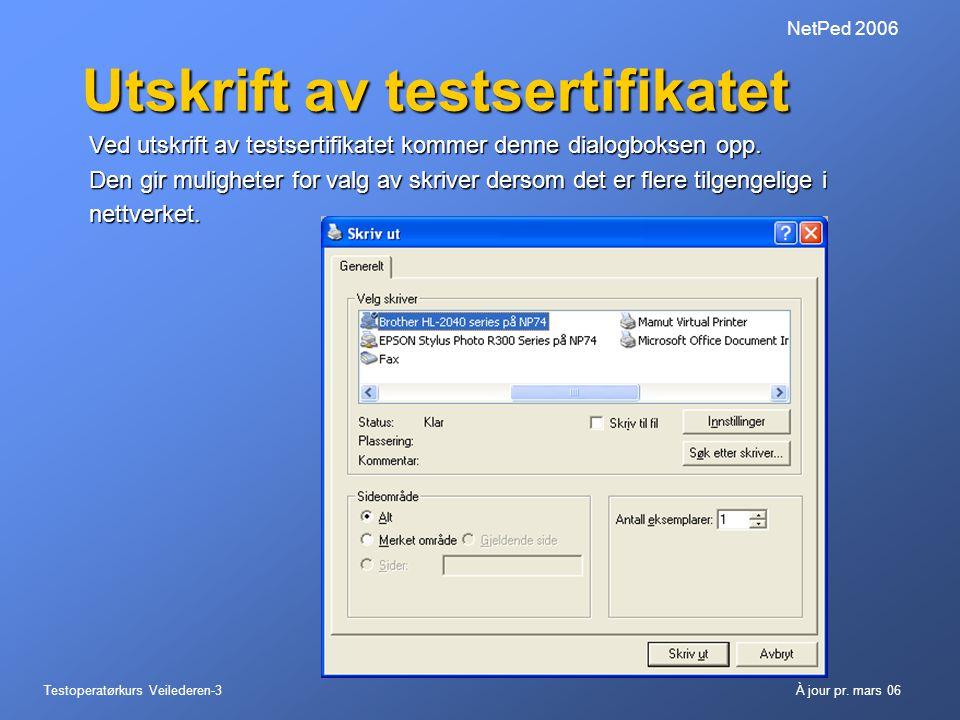 Utskrift av testsertifikatet