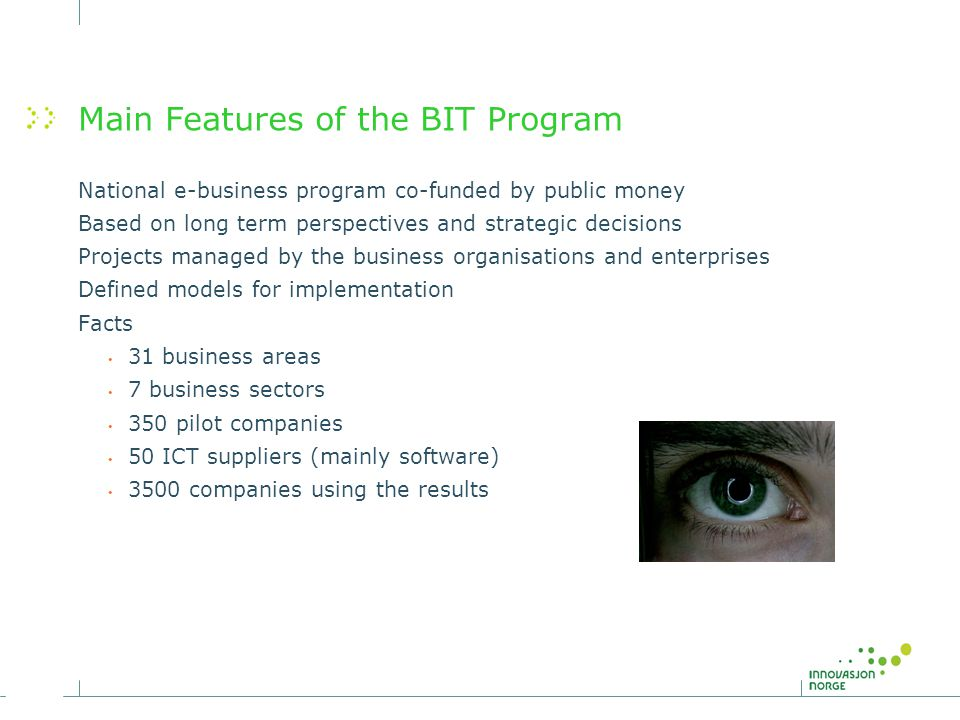 Main Features of the BIT Program