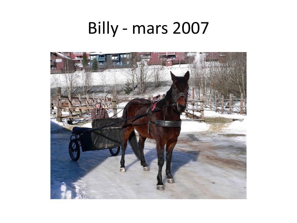 Billy - mars 2007
