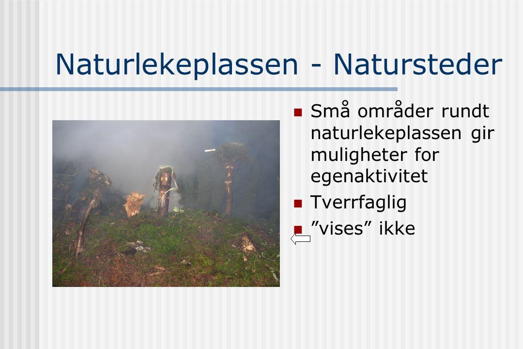 Naturlekeplassen - Natursteder