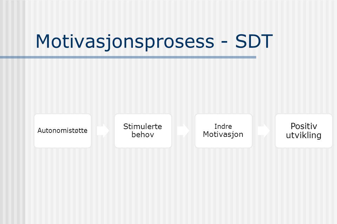 Motivasjonsprosess - SDT