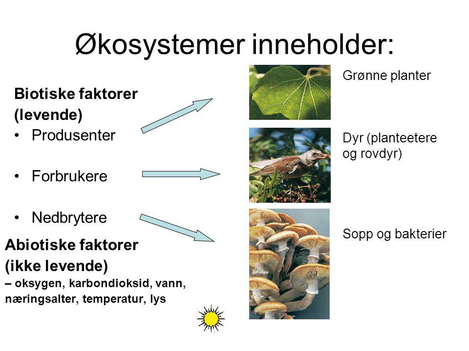 Økosystemer inneholder: