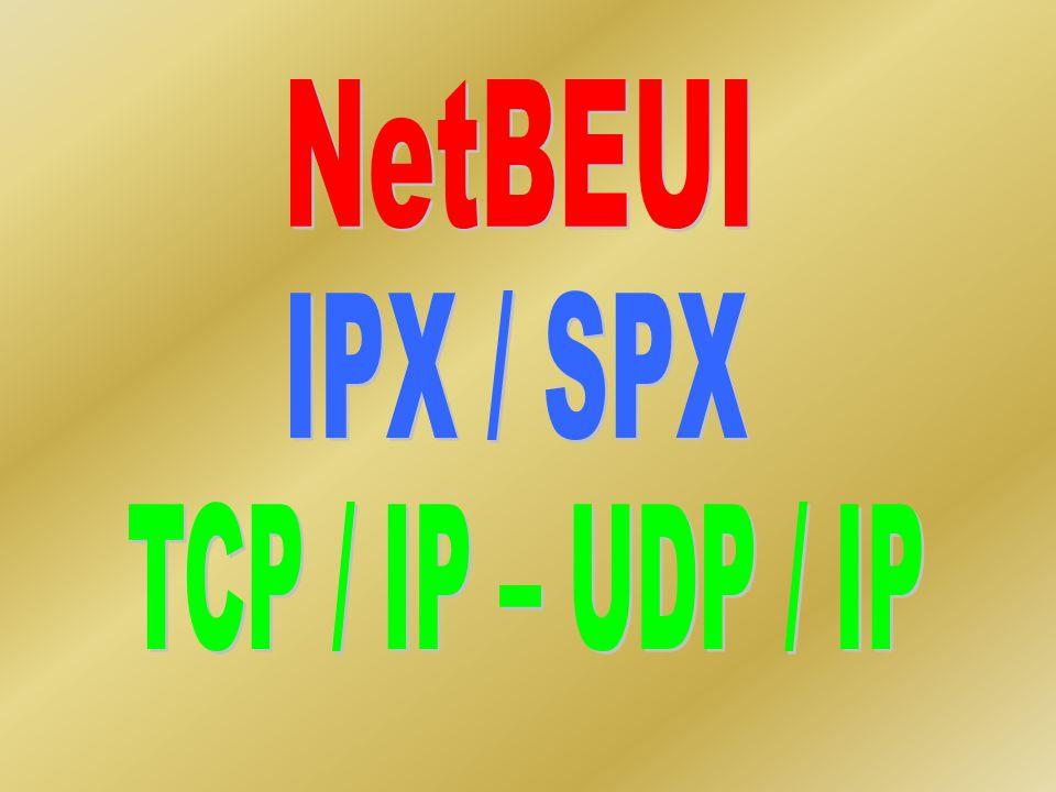 NetBEUI IPX / SPX TCP / IP – UDP / IP