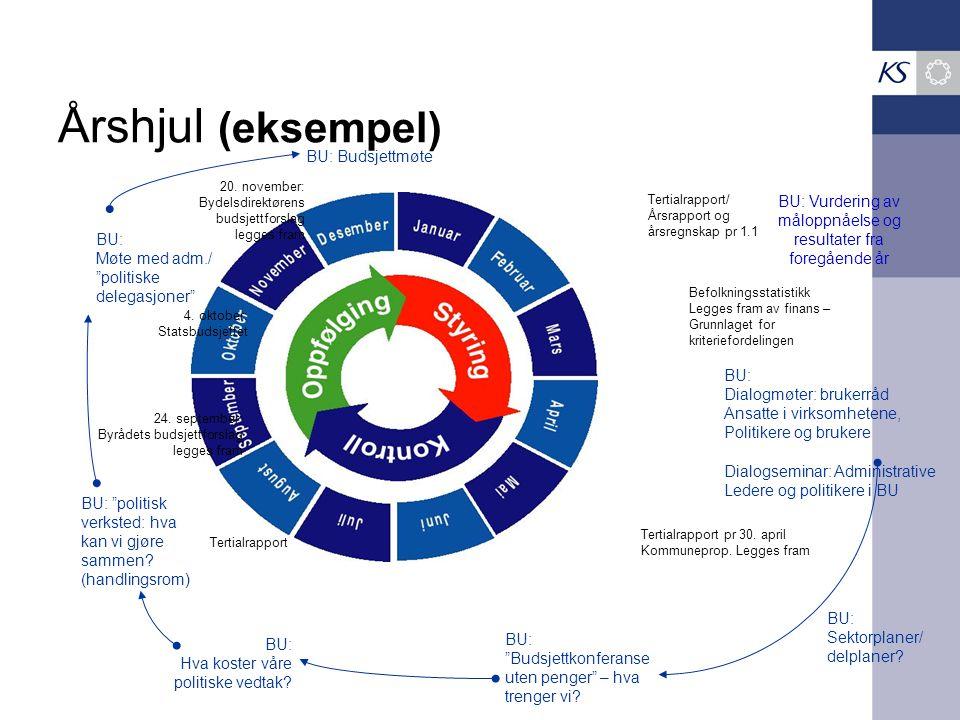 BU: Vurdering av måloppnåelse og resultater fra foregående år