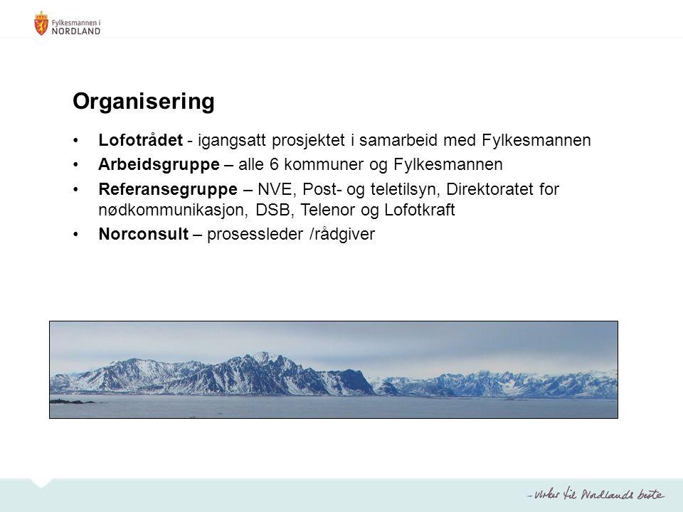 Organisering Lofotrådet - igangsatt prosjektet i samarbeid med Fylkesmannen. Arbeidsgruppe – alle 6 kommuner og Fylkesmannen.
