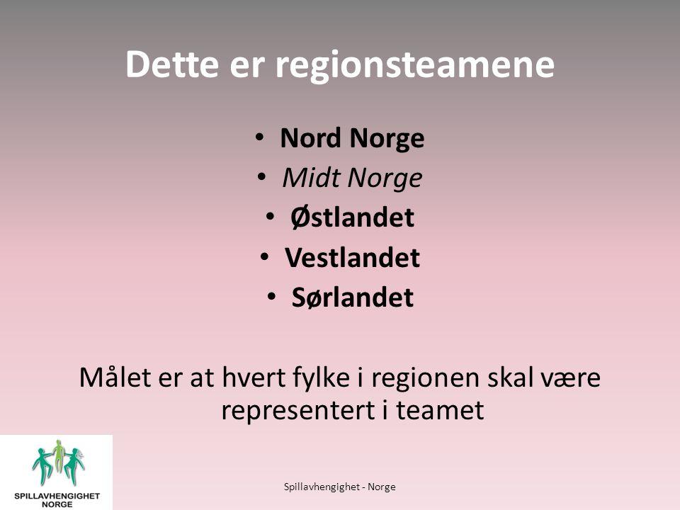 Dette er regionsteamene