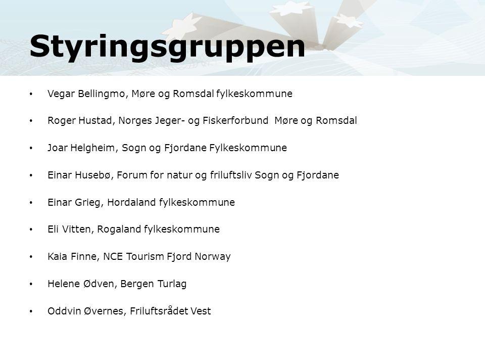 Styringsgruppen Vegar Bellingmo, Møre og Romsdal fylkeskommune