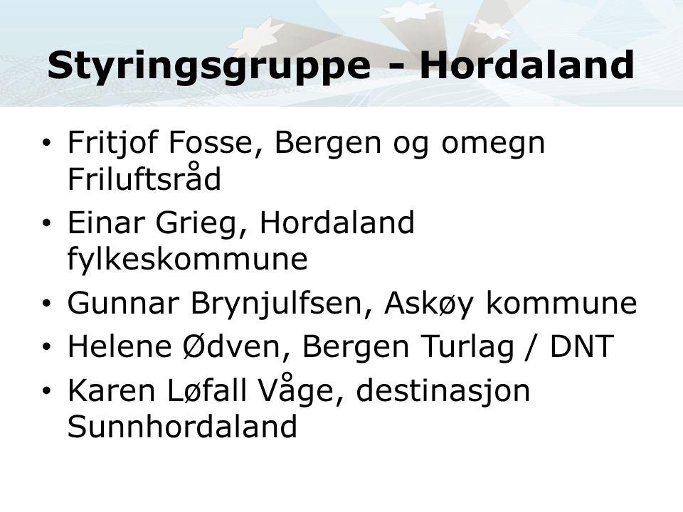 Styringsgruppe - Hordaland