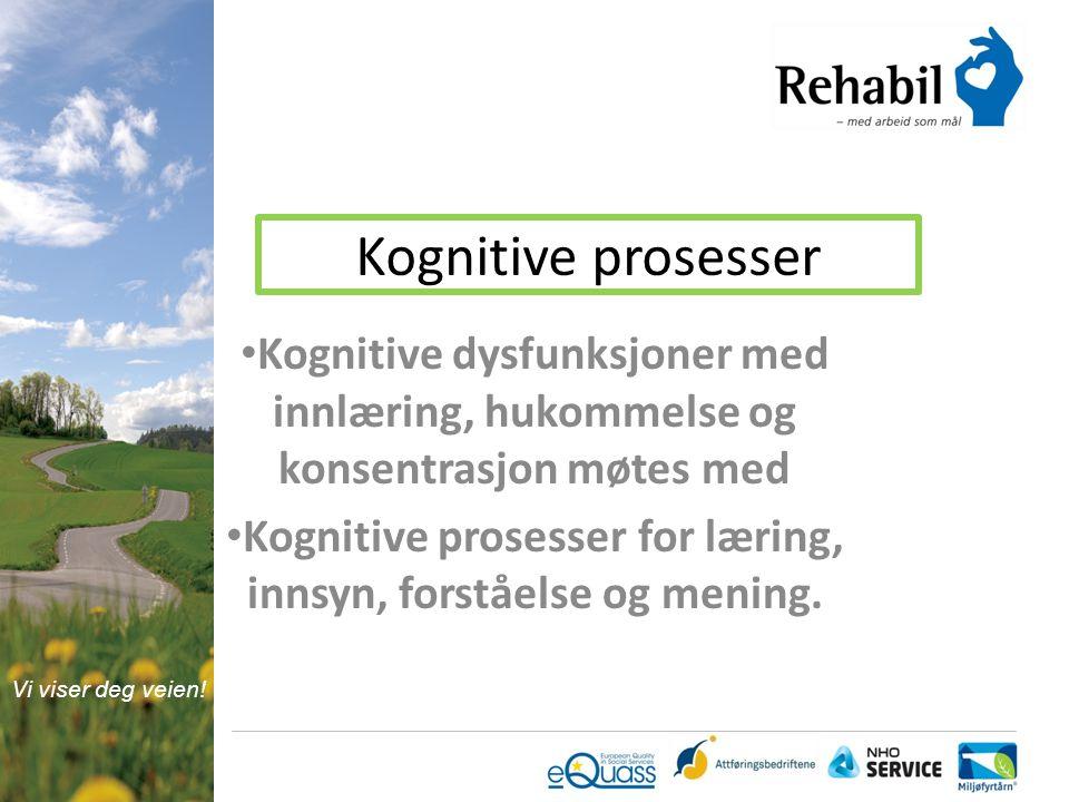 Kognitive prosesser for læring, innsyn, forståelse og mening.