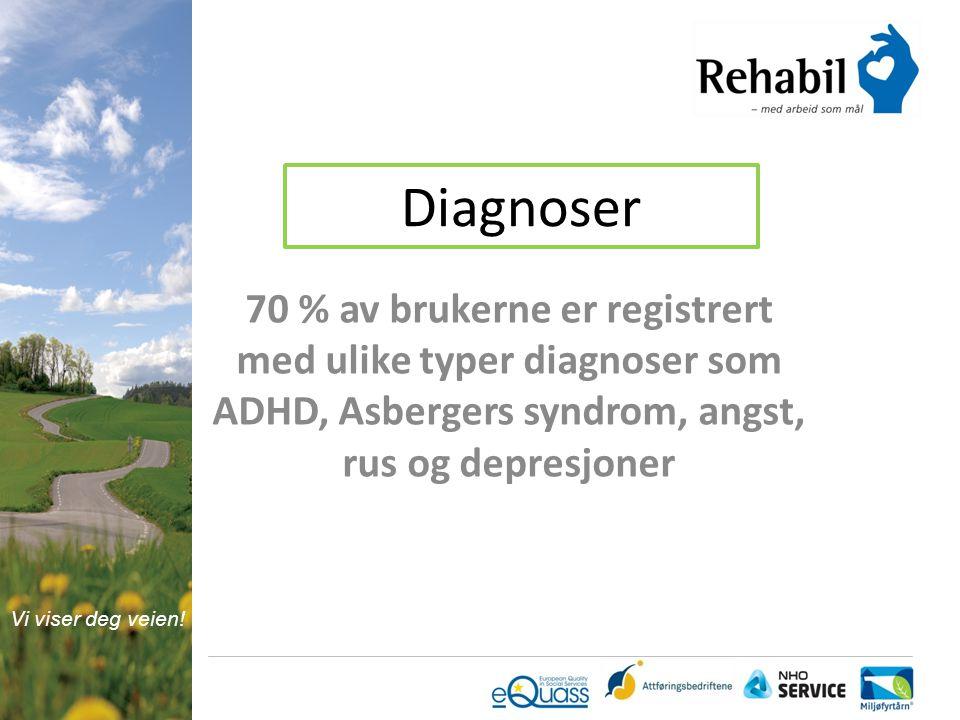 Diagnoser 70 % av brukerne er registrert med ulike typer diagnoser som ADHD, Asbergers syndrom, angst, rus og depresjoner.