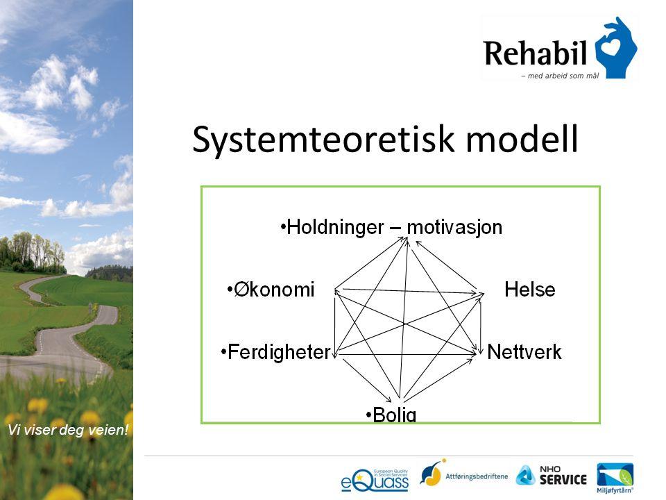 Systemteoretisk modell