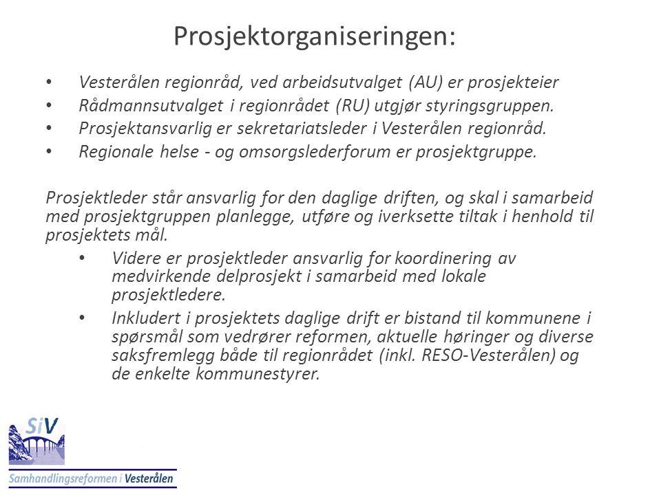 Prosjektorganiseringen: