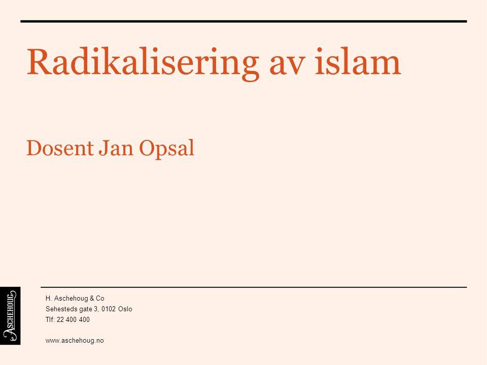 Radikalisering av islam