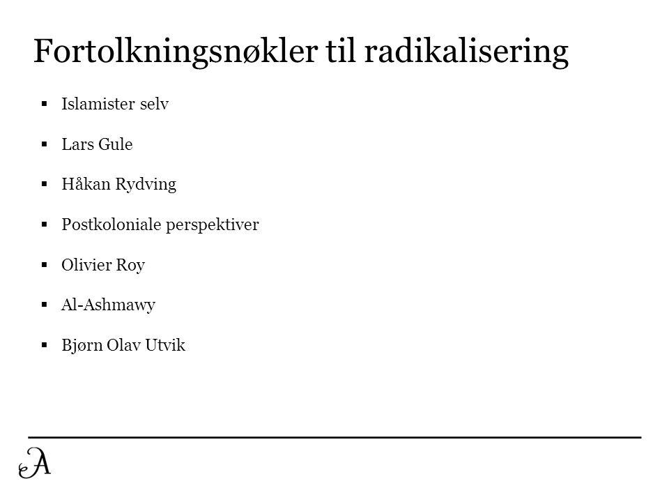 Fortolkningsnøkler til radikalisering
