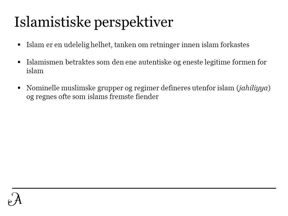 Islamistiske perspektiver