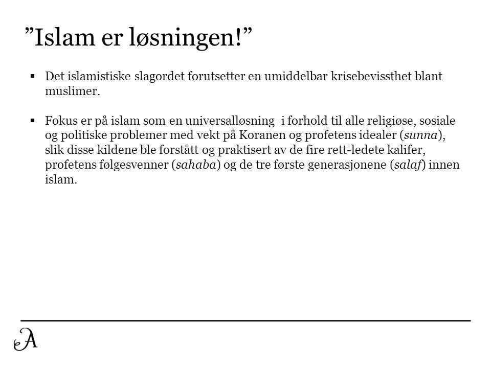 Islam er løsningen! Det islamistiske slagordet forutsetter en umiddelbar krisebevissthet blant muslimer.