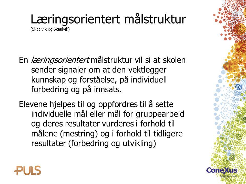 Læringsorientert målstruktur