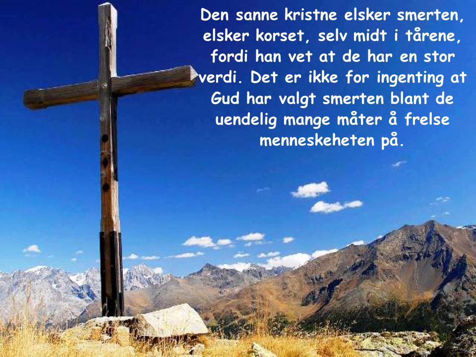 Den sanne kristne elsker smerten, elsker korset, selv midt i tårene, fordi han vet at de har en stor verdi.