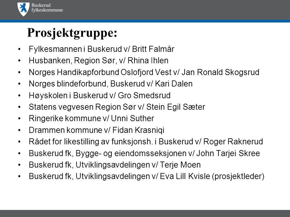 Prosjektgruppe: Fylkesmannen i Buskerud v/ Britt Falmår