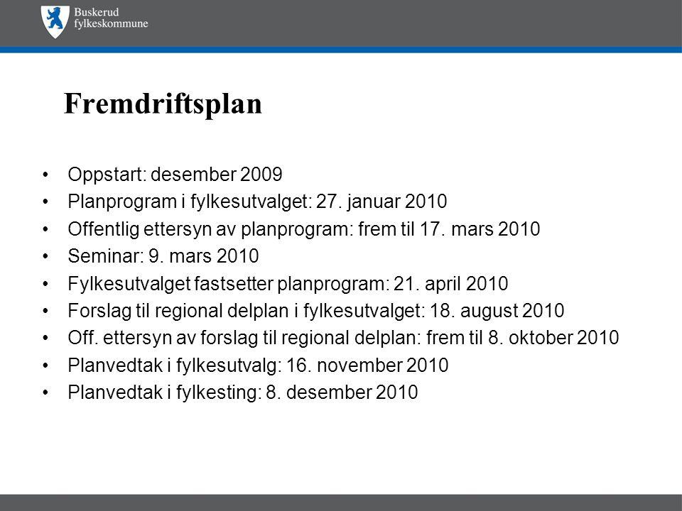 Fremdriftsplan Oppstart: desember 2009