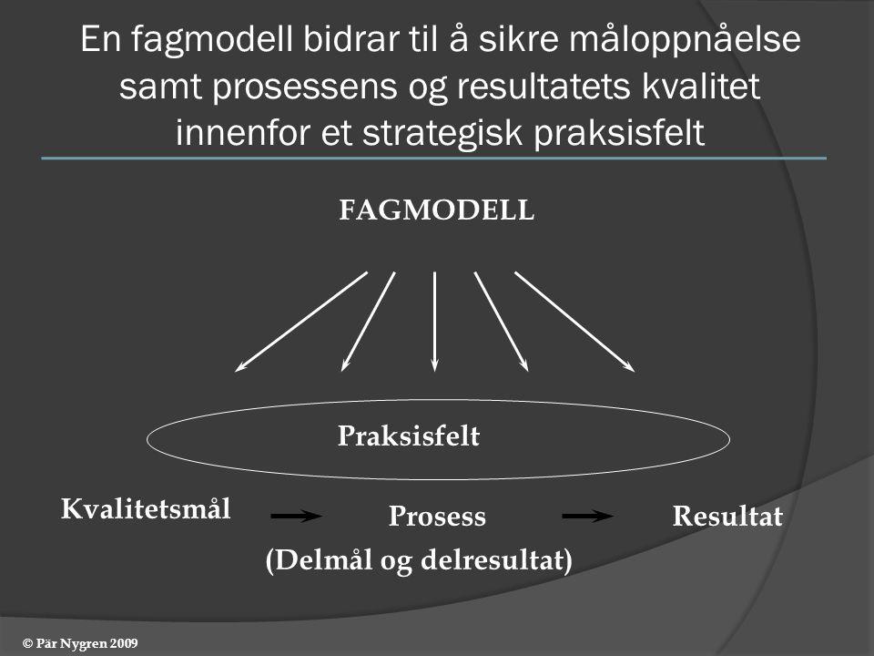 En fagmodell bidrar til å sikre måloppnåelse samt prosessens og resultatets kvalitet innenfor et strategisk praksisfelt