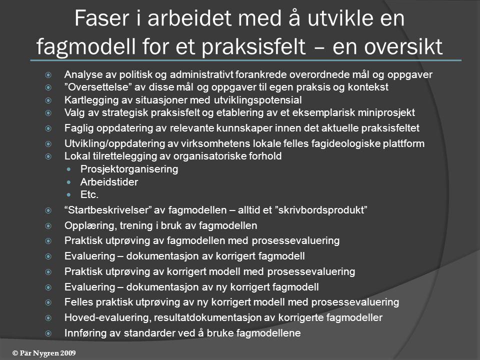 Faser i arbeidet med å utvikle en fagmodell for et praksisfelt – en oversikt