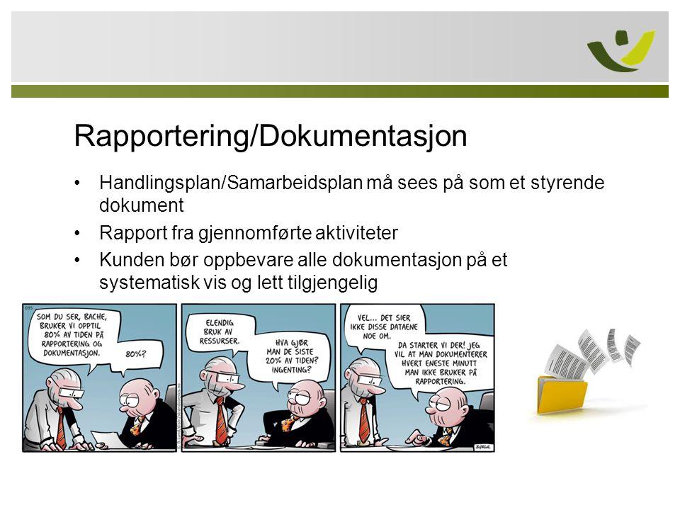 Rapportering/Dokumentasjon