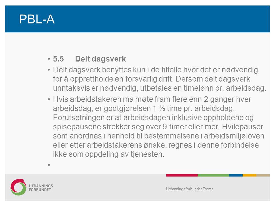 PBL-A 5.5 Delt dagsverk.