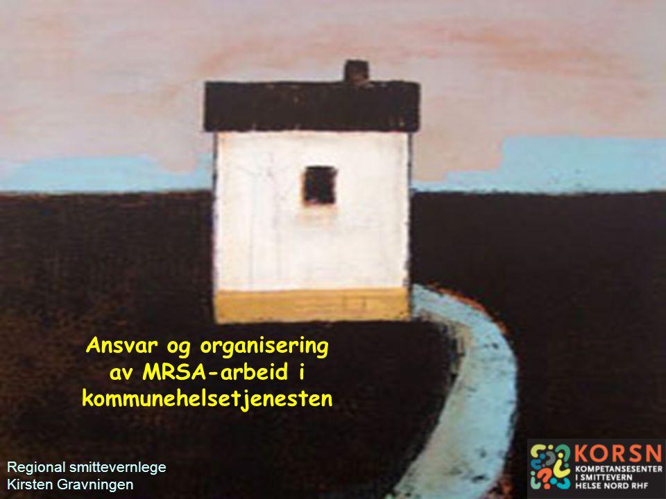 Ansvar og organisering av MRSA-arbeid i kommunehelsetjenesten
