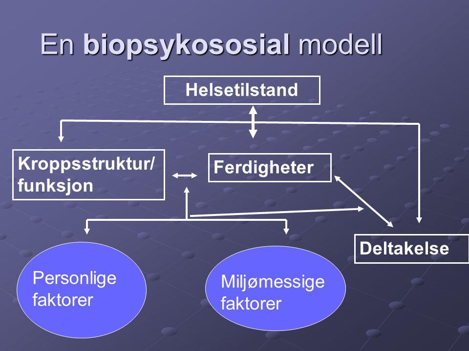 En biopsykososial modell