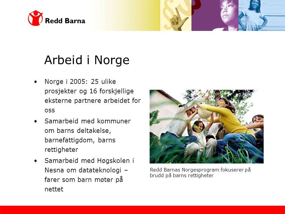 Arbeid i Norge Norge i 2005: 25 ulike prosjekter og 16 forskjellige eksterne partnere arbeidet for oss.