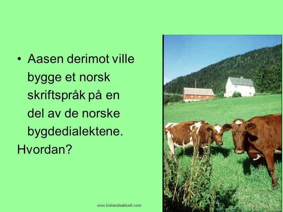 Aasen derimot ville bygge et norsk skriftspråk på en del av de norske