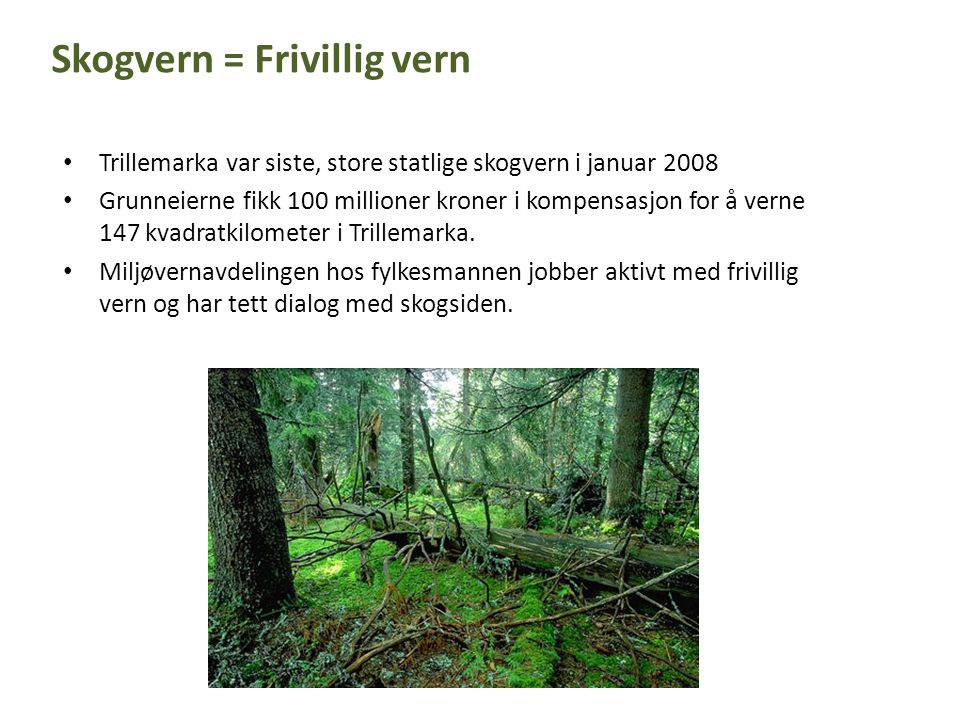 Skogvern = Frivillig vern