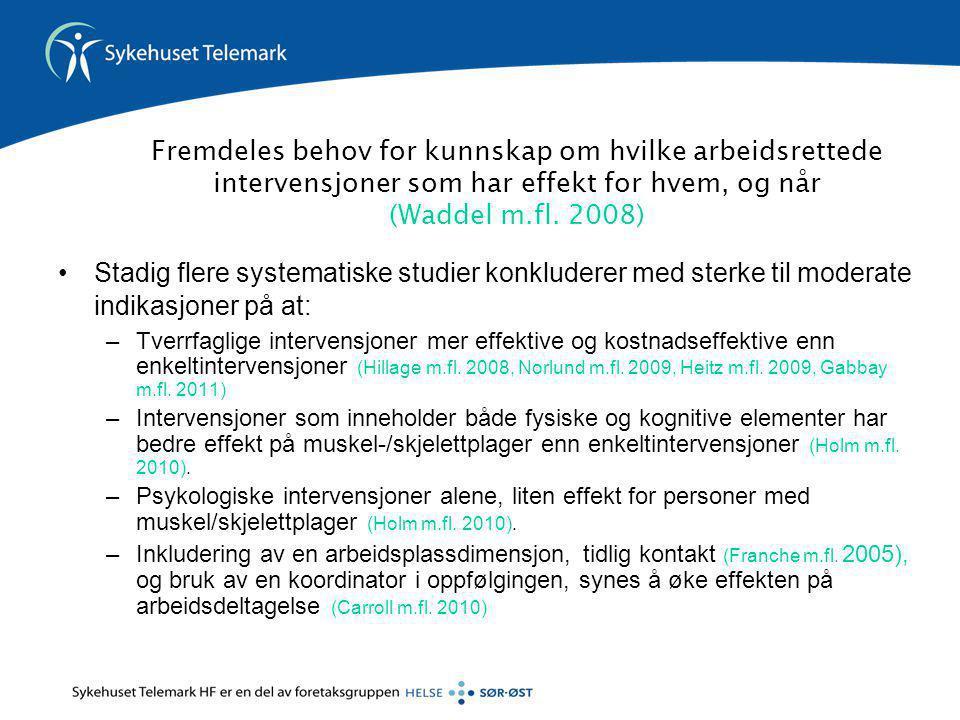 Fremdeles behov for kunnskap om hvilke arbeidsrettede intervensjoner som har effekt for hvem, og når (Waddel m.fl. 2008)