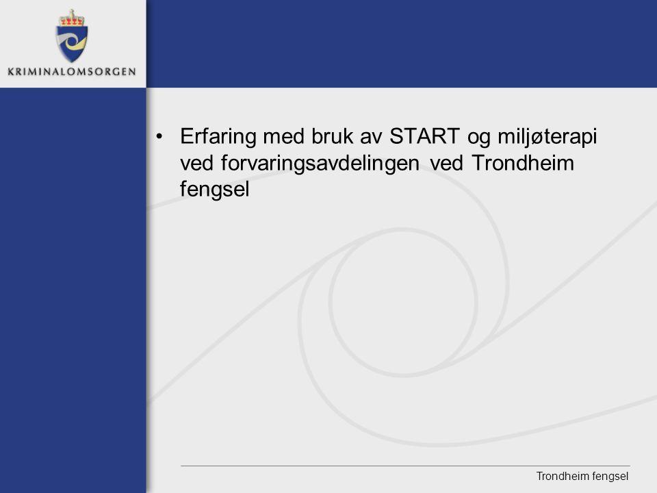Erfaring med bruk av START og miljøterapi ved forvaringsavdelingen ved Trondheim fengsel