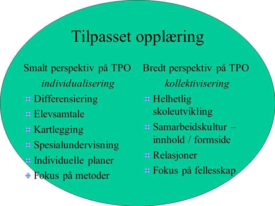 Tilpasset opplæring Smalt perspektiv på TPO individualisering