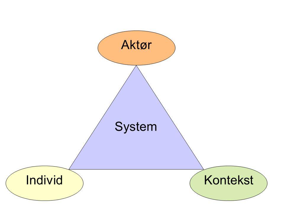 System Individ Aktør Kontekst
