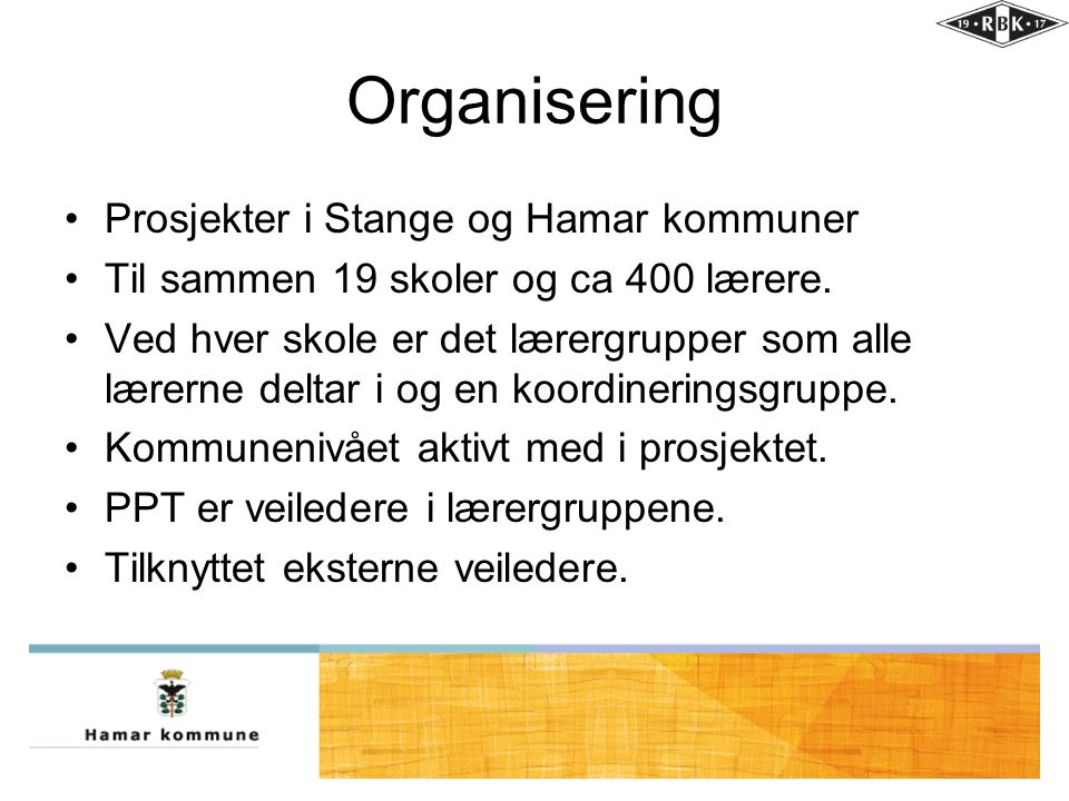 Organisering Prosjekter i Stange og Hamar kommuner