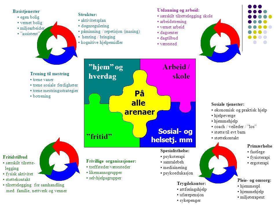 hjem og hverdag Arbeid / skole På alle arenaer fritid Sosial- og