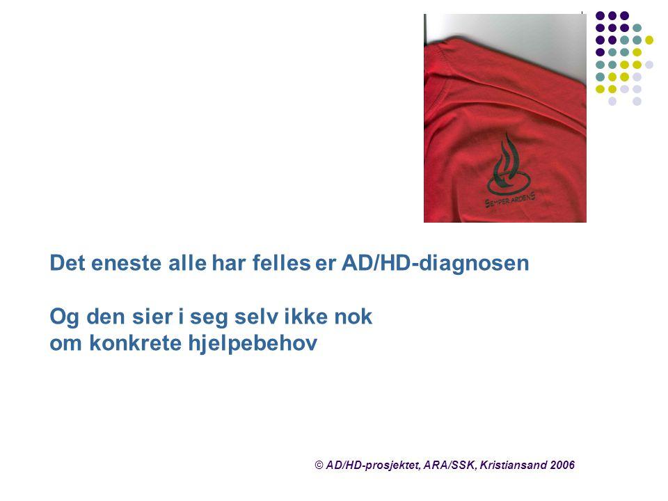 Det eneste alle har felles er AD/HD-diagnosen