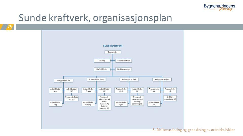 Sunde kraftverk, organisasjonsplan