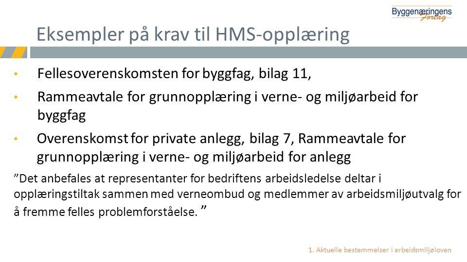Eksempler på krav til HMS-opplæring